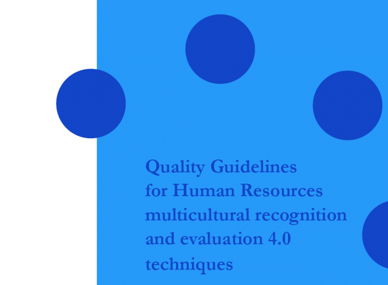 MMEHR Quality Guidelines